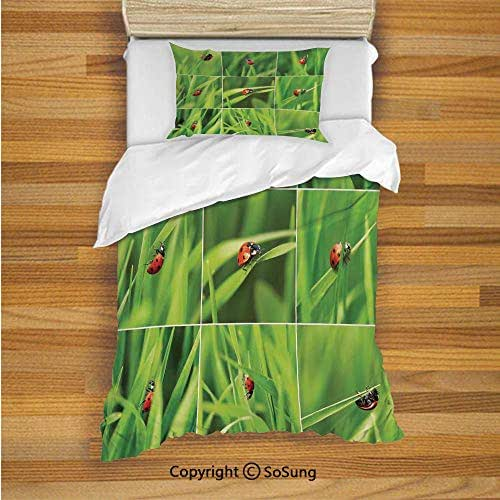 SoSung Ladybug Kids Duvet Cover Set Twin Size, Ladybug Over Fresh Grass Collection Divided Collage Vibrant Life Lawn Foliage Theme 2 Piece Bedding Set with 1 Pillow Sham,Green Red