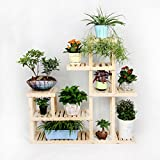 Solid wood flowerpot frame/living room balcony multi-use frame/multilayer indoor showy-A