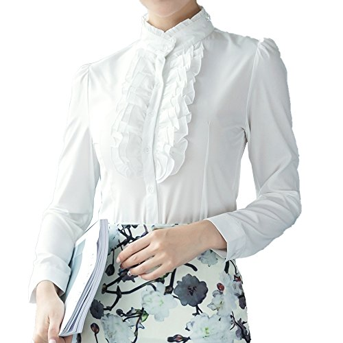 Dreamstar Women Frilly Stand Collar Victorian Ruffle Chiffon Career OL Slim Blouse (Chiffon Stand Collar)