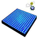 Cheap HQRP New Square 12″ LED Grow Light System 225 Blue LED 14W + Hanging Kit + UV Meter