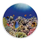 iPrint Thick Round Beach Towel Blanket,Ocean,Wild Sea Life Colorful Ancient Coral Reefs Exotic Fishes Bali Indonesia,Tan Blue and Orange,Multi-Purpose Beach Throw
