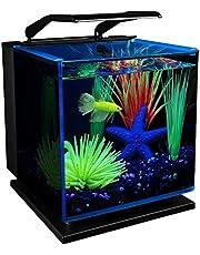 GloFish Betta Shadowbox Aquarium Kit
