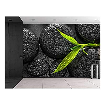 Rain Drops Over Black Rocks and a Little Green Plant - Wall Mural, Removable Sticker, Home Decor - 66x96 inches