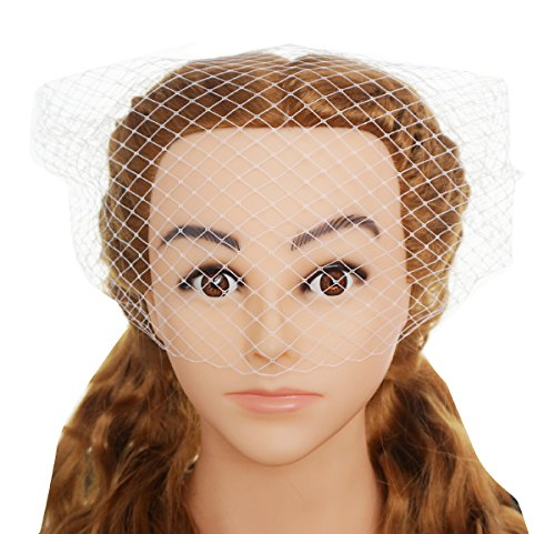 - Blank K Wedding Bridal Face Veil Tea-time Derby Party Birdcage Face Veil with 2 Combs (Pink)
