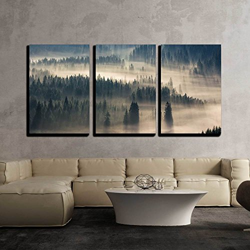 Fir Trees on a Meadow Down the Will to Coniferous Forest in Foggy Mountains x3 Panels