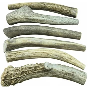 """6 Pack- Small 4""""-5"""" All Natural Deer Antler Dog Chews - WhiteTail Naturals Brand"""