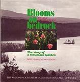 Blooms on Bedrock, Mea Kaemmerlen, 0910020418