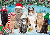 Buffalo Games – Adorable Animals – Meowy Christmas – 300 Large Piece Jigsaw Puzzle