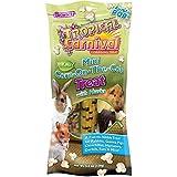 F.M. Brown Tropical Carnival Mini Corn-on-The-Cob Pet Treat, 5.5-Ounce