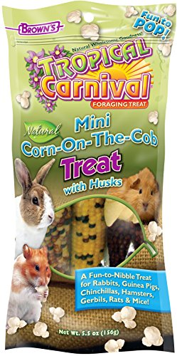 Tropical Carnival F.M. Brown's Natural Mini Corn-on-The-Cob Pet Treat with Husks, Small Animal Foraging Treat, (Tropical Carnival Hamster Food)