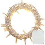 PMS 300/400/500 LED String Fairy Lights Battery Power Operated for Christmas Tree Xmas Party Garden (500LEDs, Warmwhite)