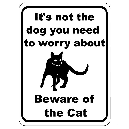 (It's Not The Dog You Need To Worry About Beware Of The Cat -12
