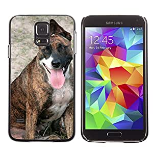 Etui Housse Coque de Protection Cover Rigide pour // M00114526 Ear Dog Watching perra Beach // Samsung Galaxy S5 S V SV i9600 (Not Fits S5 ACTIVE)