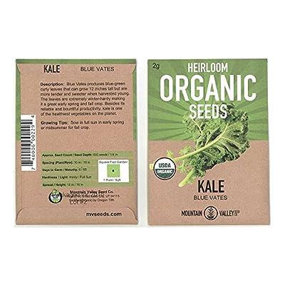 Kale Seeds - Vates Blue Scotch Curled - 2 Gram Packet - Non-GMO, Heirloom, Organic - Vegetable Garden & Microgreens