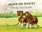 Musk Ox Babies of the Far North, Helen Von Ammon, 0964775654
