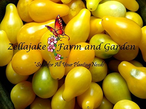 Tomato Yellow Pear Seeds Heirloom Tiny Cherry rare 100 seed
