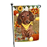 Fall Autumn Greeting Dachshund Dog with Pumpkins Garden Flag GFLG0625