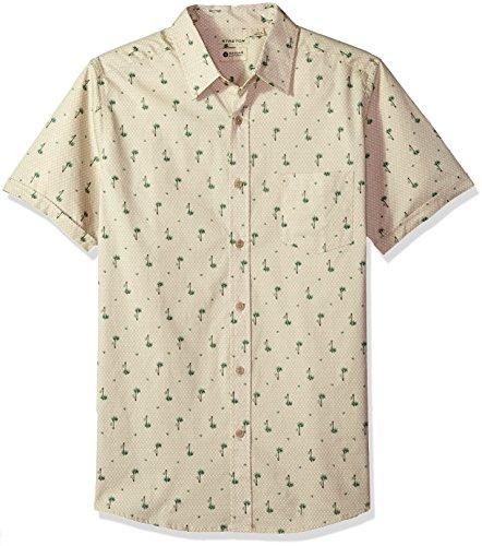 Print Ecru (Haggar Men's Short Sleeve Micrographic Prints Woven Shirt, ECRU/Palm Tree, L)