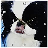 3dRose LLC Japanese Chin 10 by 10-Inch Wall Clock