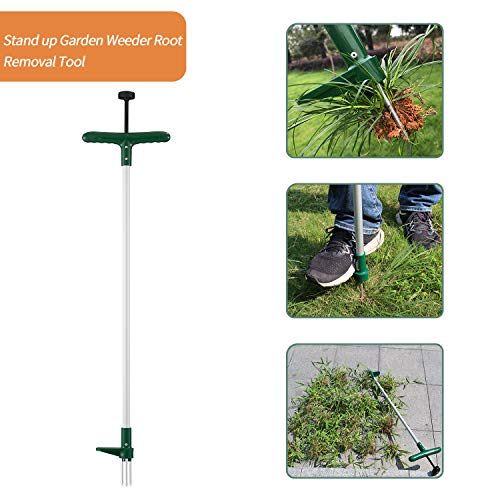 Walensee Stand Up Garden Weeder and Root Removal Tool, Stand up Manual Weeder Hand Tool with 3 Claws, Stainless Steel and High Strength Foot Pedal, Ideal for Permanently Removing Dandelion, 39-Inch by Walensee