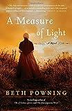 A Measure of Light: A Novel