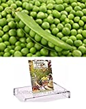 Homegrown Pea Seeds, 130 Seeds, Organic Garden