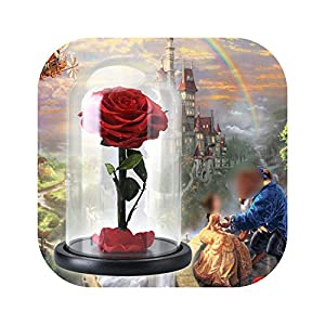 Blue Skieses The Beauty and The Beast Artificial Flowers Decoration. Red Eternal Rose in a Glass Dome. Valentine 16