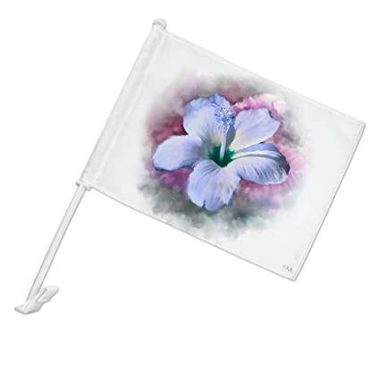 Amazoncom Graphics More Tropical Blue Hibiscus Hawaiian Bloom