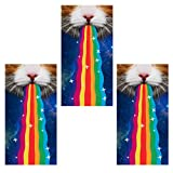 PAMASE 3 Pcs Rainbow Cat Face Mask, Seamless