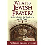 What is Jewish Prayer?: An Introduction to the Theology of Jewish Prayer (Introduction to Judaism Book 2)