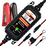 MOTOPOWER MP00205A 12V 800mA Fully Automatic Battery...