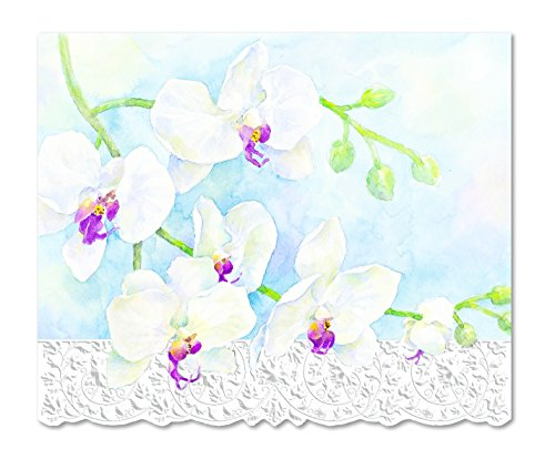 Carol Wilson Fine Arts Inc.- White Orchid - Embossed & Die Cut Blank Note Cards in Portfolio Box - 10 count - ncp2213