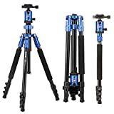 Camera Tripod, ZOMEi 63 Inch Aluminum Compact Tripod with Ball Head Quick Release Plate DSLR Tripod Monopod for Camera Canon Nikon Sony DSLR DV Blue