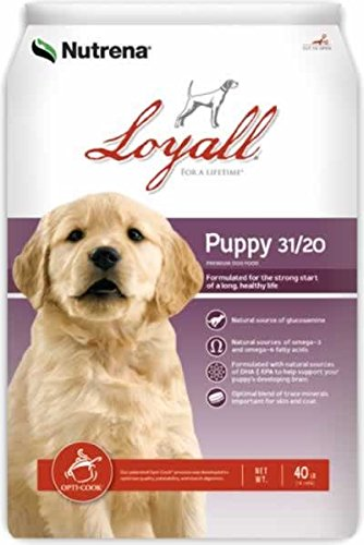loyall-puppy-40lb