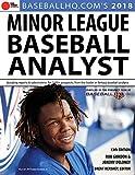2018 Minor League Baseball Analyst
