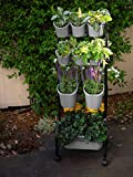 Watex Mobile Green Wall