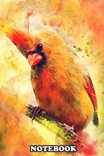 Notebook: Cardinal Bird , Journal for Writing, College Ruled Size 6