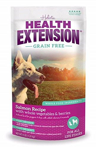 Cheap Health Extension Grain Free Salmon Recipe, 23.5-pounds