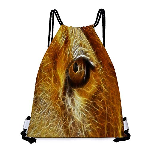 Easy to carry drawstring backpack fractalius lions Durable Drawstring Backpack W17.3 x L13.4 Inch