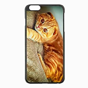 iPhone 6 Plus Black Hardshell Case 5.5inch - portrait plays paw cat Desin Images Protector Back Cover