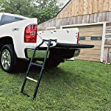 Automotive : Traxion 5-100 Tailgate Ladder
