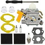Dalom C1U-H60 Carburetor w Tune Up Kit Air Filter for Ryobi Homelite 25cc 30cc String Trimmer Brushcutter 985624001 308054003 985308001 3074504