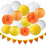 Arts & Crafts : Thanksgiving Decorations Fall Decorations Autumn Decorations Kit Orange Yellow White Hanging Tissue Paper Pom Poms Paper Lanterns Halloween Candy Corn Banner Fall Wedding Decorations