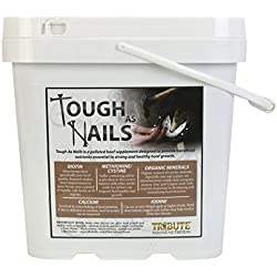 Tribute Equine Nutrition Tough As Nails 11lbs Pelleted Hoof Supplement Bucket (1)