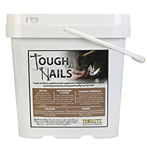 Tribute Tough As Nails 11lbs Pelleted Hoof Supplement 6