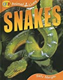 Snakes, Sally Morgan, 1595661212