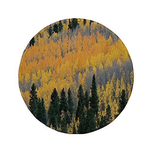 Non-Slip Rubber Round Mouse Pad,Fall,Colorful Aspen Forest in Colorado Rocky Mountains Western Wilderness USA Theme,Green Yellow Grey,7.87