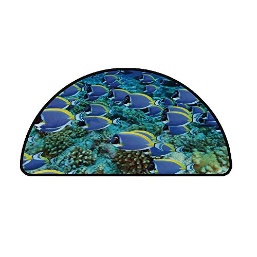 - Ocean Comfortable Semicircle Mat,School of Powder Blue Tang Fishes in The Coral Reef Maldives Deep Seas for Living Room,27.5
