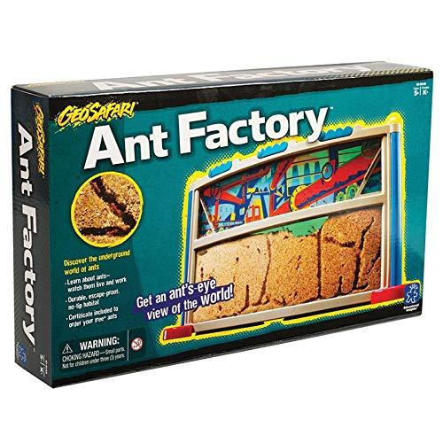 Geosafari Ant Factory by educational