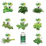 AeroGarden Gourmet Herb Seed Pod Kit (9-Pod)